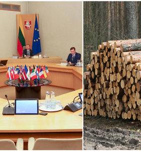 Seimo Antikorupcijos komisija stebėjosi: kas vyksta šioje Vyriausybėje, kad priimami neteisėti sprendimai?