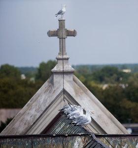 Katalikybė Lietuvoje skaičiais: kiek Lietuvoje yra kunigų ir kiek bažnyčių?