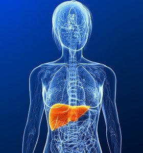Kas labiau kenkia kepenims – netinkama mityba ar vaistai? Didžiausi kepenų žudikai