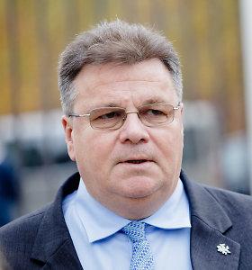 """L.Linkevičius: """"Agrokoncernas"""" neturėtų susireikšminti"""