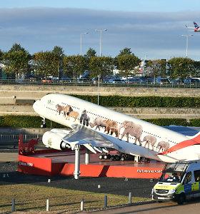 JK policija sutrukdė klimato aktyvistams dronais priversti uždaryti Hitrou oro uostą