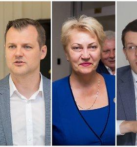 Vilniaus socialdemokratai į merus siūlo G.Palucką, R.Budbergytę, M.Skarupską