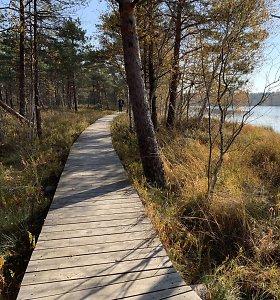 Ilgiausias pažintinis takas pelkėje Lietuvoje – dabar dar ilgesnis