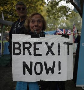 """Prieš """"Brexit"""" – nerimas dėl Jungtinėje Karalystėje gyvenančių ES piliečių statuso"""