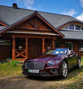 """Kabrioletas """"Bentley Continental GT"""": automobilis, nuraunantis stogą"""