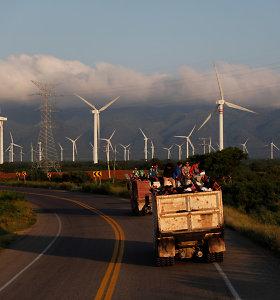 Meksikos pietus supurtė 5,3 balo žemės drebėjimas