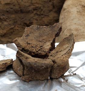 Gruzijoje rasta seniausių žinomų vyndarystės pėdsakų
