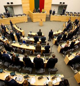 Pakeista dvigubos pilietybės referendumo data: vyks su pirmuoju prezidento rinkimų turu