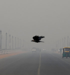 """Indijos sostinėje per britų princo vizitą oro užterštumas pasiekė """"kritinį"""" lygį"""
