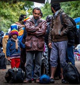 Kivirčai dėl pabėgėlių Seime: konservatoriai išvadinti nejautriais, M.Adomėnas jau regi Europos pabaigą