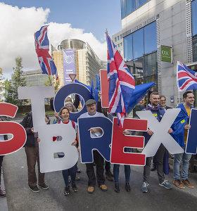 """Prancūzija: šiuo etapu naujas """"Brexit"""" atidėjimas nėra pateisinamas"""
