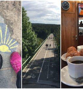 """500 km """"Camino Lituano"""": išbandytas etapas pranoko net ir taip didelius lūkesčius"""