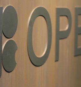 OPEC ir partnerės susitarė mažinti naftos gavybą 500 tūkst. barelių per parą
