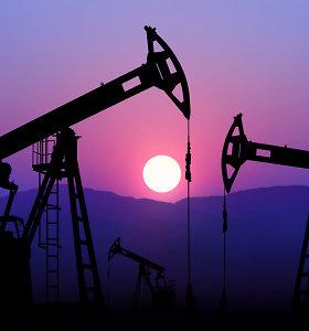 """""""Wintershall Dea"""" vadovas: Rusijai ir Ukrainai nesusitarus dėl dujų, jos Europoje brangs"""