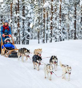 5 idėjos šeimos Kalėdų atostogoms Suomijoje