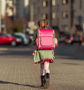 Nuo gegužės 25-osios: pradinukai grįžtų į mokyklas, darbą atnaujintų būreliai