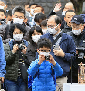 Japonijos fenomenas: sena visuomenė, sklidinos miestų gatvės ir mažai infekcijų