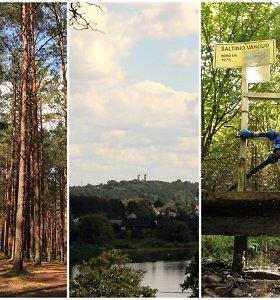 Vaizdingas kurortinis takas vidury Lietuvos: Nemuno panoramos, grybai ir sveikatos šaltinis