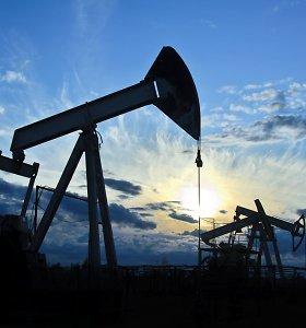Naftos kainų augimas įsibėgėjo iki daugiau nei 1,5 proc.