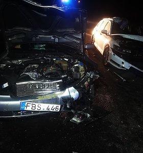 Avarija Šilalės rajone pareikalavo vairuotojo ir briedžio gyvybių