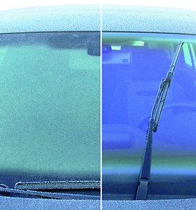 Ar gali skutimosi putos išgelbėti nuo langų rasojimo?