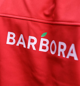 """Lygių galimybių kontrolierė pradėjo tyrimą dėl """"Barboros"""""""