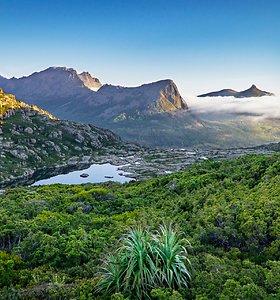 Tolimoji Tasmanija – užburiančios gamtos rojus (I dalis)