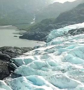 Klimatologas perspėjo dėl Aliaskoje užfiksuotų rekordinių karščių: tokių reiškinių tik daugės