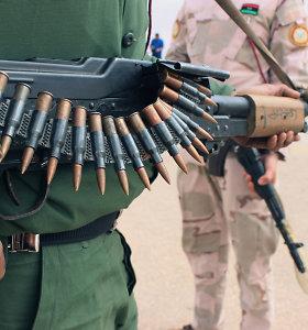 Berlyno taikos planas Libijai – pagrindiniai punktai