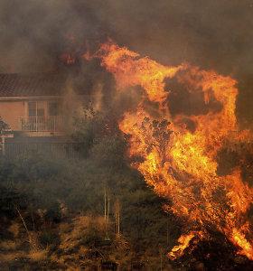 Laukiniai gaisrai prie Los Andželo jau nusinešė vieną gyvybę, tūkstančiams liepta evakuotis