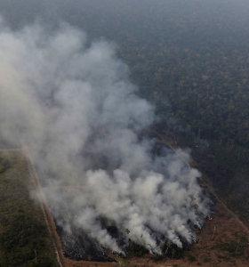 Popiežius ragina vyskupus drąsiais veiksmais ginti gaisrų niokojamus Amazonijos miškus