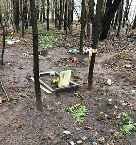 Nelegalios gyvūnų kapinės Karoliniškėse