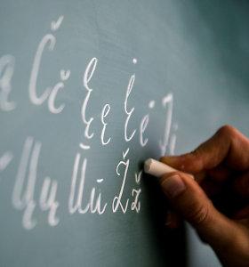 Kalbininkai ragina išmokti gyventi su anglų kalba ir siūlo greičiau keisti įstatymą