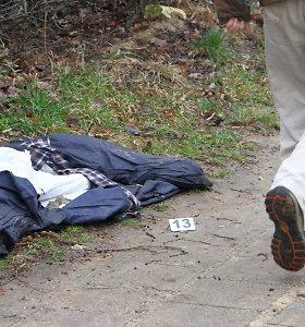 Vyro nužudymu Panevėžyje įtariamas paauglys