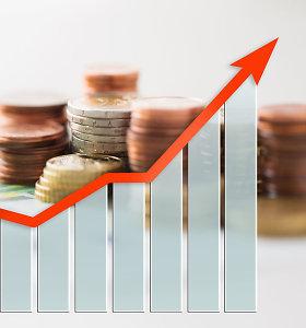 """Domestique Asset Management"" steigia į paskolas investuosiantį fondą"