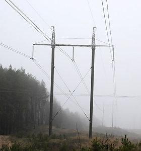 Vyriausybė spręs dėl visuomeninio elektros tiekimo