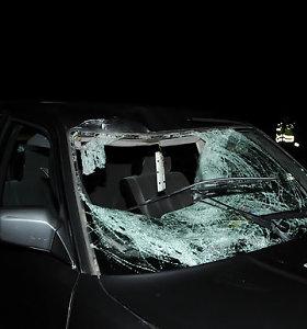 """Žūtis kelyje Baisogala–Šeduva: """"Audi"""" patamsiai partrenkė nežinomą pėsčiąją"""