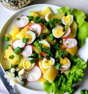 Bulvės – ir gaivioms salotoms, ir netikėtiems užkandžiams ar vėrinukams. 15 receptų