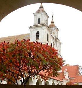 Tytuvėnų bažnyčia žiemos su ne iki galo uždengtu stogu