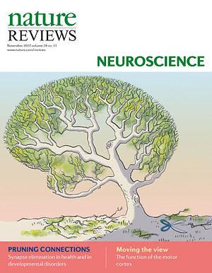 """Leidėjo iliustr./""""Nature Reviews Neuroscience"""" viršelis"""