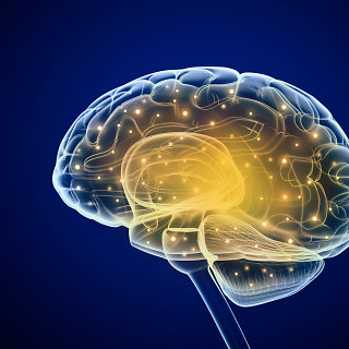 Smegenų auglys