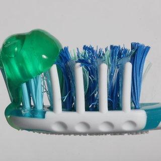 Dantų šepetėlis
