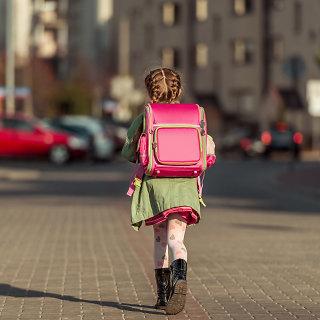 Mokinio krepšelis