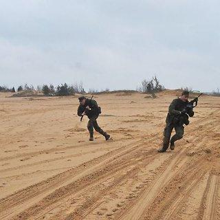 Lietuvos kariuomenės Sausumos pajėgos (SP)