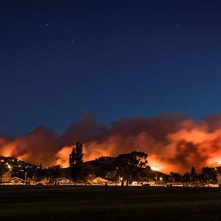 Miškų gaisringumas