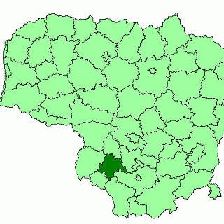 Marijampolės savivaldybė