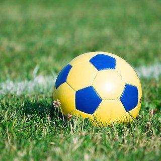 Lietuvos futbolo federacija (LFF)