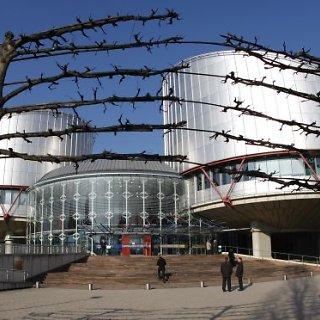 Europos Žmogaus Teisių Teismas (EŽTT)