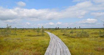 Netikėta kryptis trumpai kelionei: pamatyti kerinčią Baltarusijos gamtą