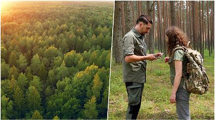 Išgyventi gamtoje: paprastos, bet svarbios taisyklės, kurios padės susigaudyti pasiklydus miške